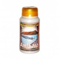 Амла (Amla) 100 таб Шри Гагна (Shri Ganga)